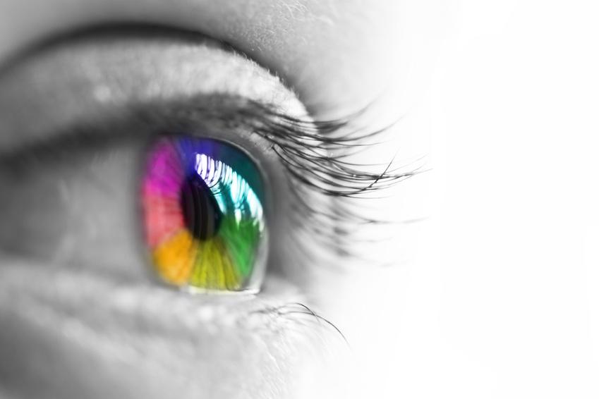 Formation couleurs, Daniel Briez