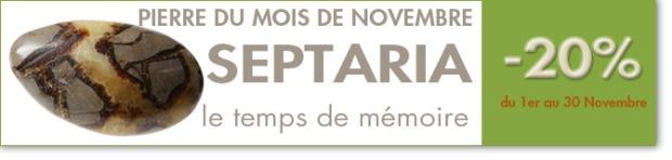 SEPTARIA : pierre du mois de Novembre 2014