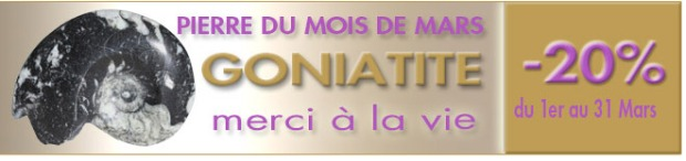 LA GONIATITE, pierre du mois de Mars 2015, www.cristaux-sante.com