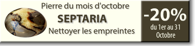 Retrouvez la pierre du mois d'octobre : le Septaria sur www.cristaux-sante.com