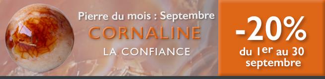 Retrouvez la pierre du mois de septembre 2016 : la Cornaline sur www.cristaux-sante.com