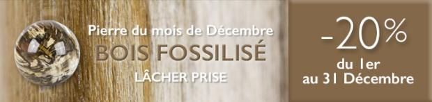 Retrouvez la pierre du mois de Décembre 2016 : le Bois Fossilisé sur www.cristaux-sante.com