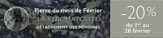 Retrouvez la pierre du mois de Février 2017 : la Stromatolite sur www.cristaux-sante.com
