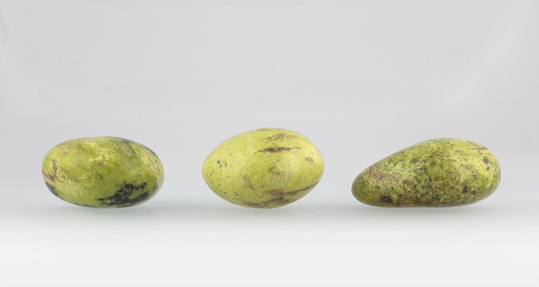 Galets d'Opale Verte Fossilisée, photo ®Cristaux et Santé, 2017