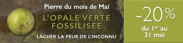 Retrouvez la pierre du mois de Mai 2017 : l'Opale Verte Fossilisée sur www.cristaux-sante.com