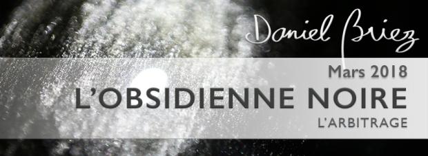 LA PIERRE DU MOIS DE MARS 2018 – L'OBSIDIENNE NOIRE